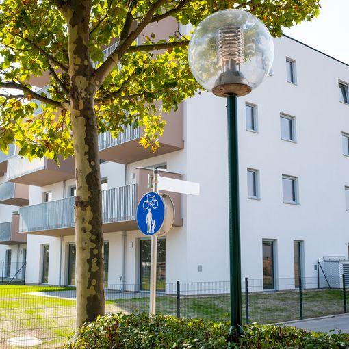 Biedermannsdorf